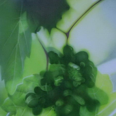 unclear, out of focus, green, grape, airbrush, canvas, photorealistic, art, painting, handmade, grape leaves, wine, vintage, harvest, tamas mike <img src='assets/img/sold.png' />